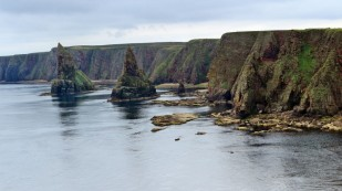 Felsküste an den Stacks of Duncansby