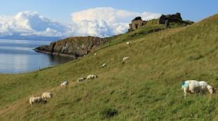 ...die Ruinen von Duntulm Castle