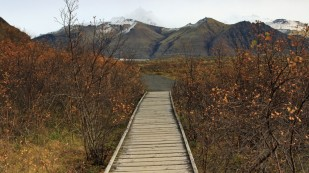 Der Skaftafell-Nationalpark...