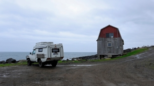 Whale Cove