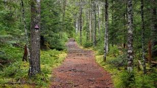 Schöne Wanderwege