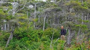 Auf dem Wild Pacific Trail