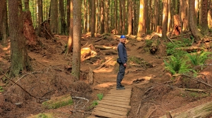 Unterwegs im Wald...