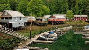 Pfahlbauten rund um den Fischerhafen in Telegraph Cove