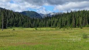 Auf dem Paradise Meadows Trailhead