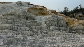 ...von Mammoth Hot Springs