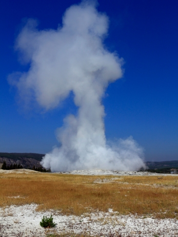 "Old Faithful - der ""alte treue "" Geysir"