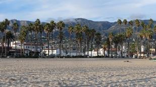 Palmen und Strand...