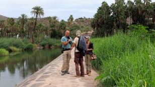 Gespräche auf dem Damm