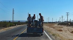 Übliche Transportart