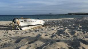 ...am Strand von Los Barriles