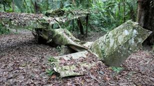 Flugzeugwrack mitten im Dschungel