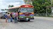 Die Busse sind ebenfalls farbenfroh