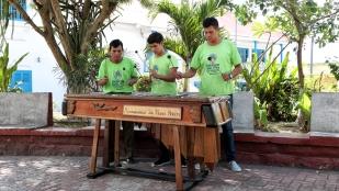 ...den Marimbamusikern...