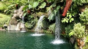 Kleine Wasserfälle am Teich