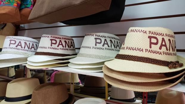 Der Mann mit dem Panamahut