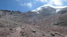 Immen den Chimborazo vor Augen