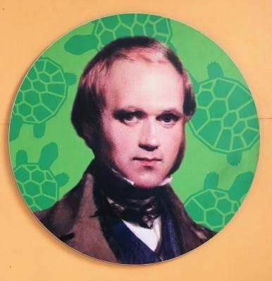 Charles Darwin forschte 1836 fünf Wochen auf Galapagos